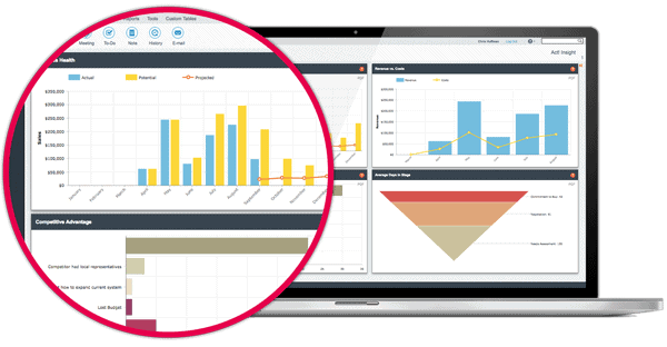 Act! Insight Dashboard Design Services